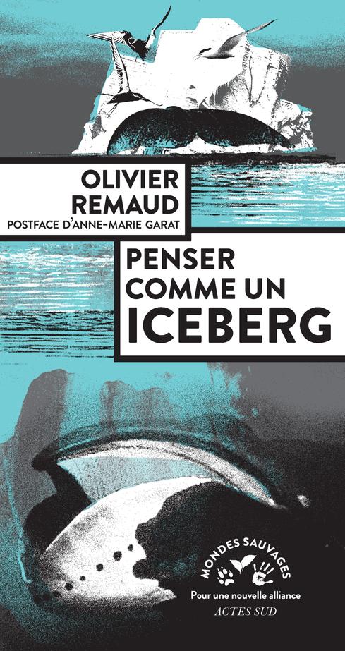 O. Remaud, Penser comme un Iceberg