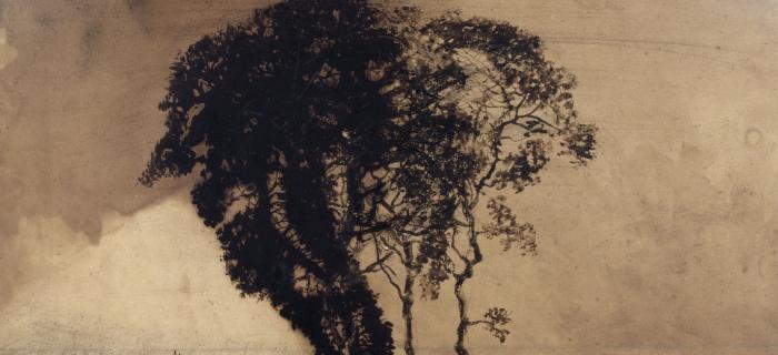Victor Hugo, dessins. Dans l'intimité du génie