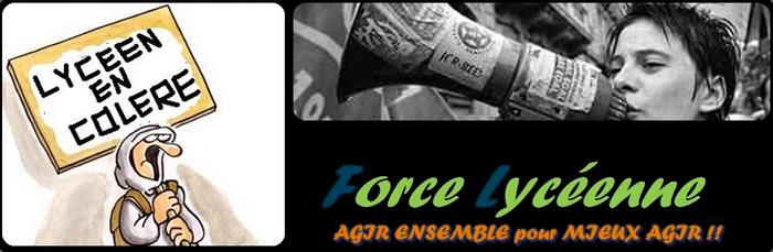 Naissance de Force lycéenne, nouveau syndicat lycéen. Été 2009