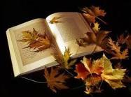 Les (bonnes) feuilles d'automne