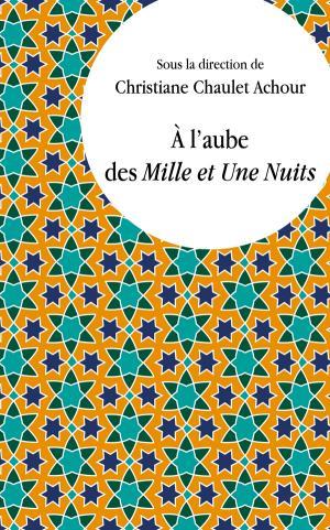 Chr. Chaulet Achour (dir.), À l'aube des Mille et Une Nuits. Lectures comparatistes