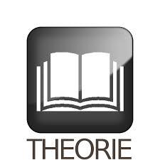 La théorie littéraire des écrivains