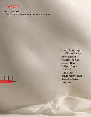Collectif, D'après. Des romanciers au musée des Beaux-Arts de Lyon