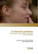 Chr. Michel et J.-B. Renault (dir.), Le Sens de la profusion