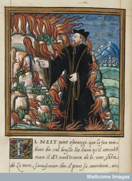 Pierre Boaistuau ou le génie des formes (Nantes)