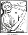 Les créations poétiques et rhétoriques de la science