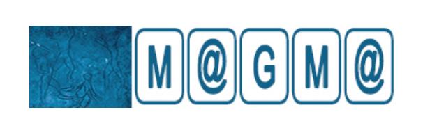 M@GM@, vol.17, n°3,