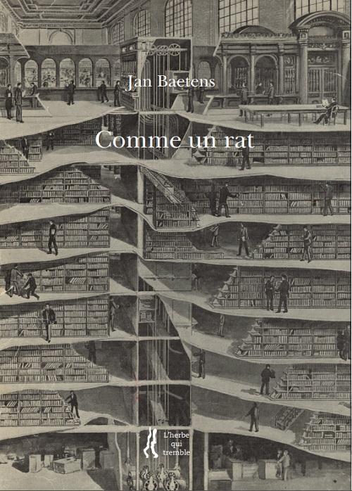 Jan Baetens, Comme un rat