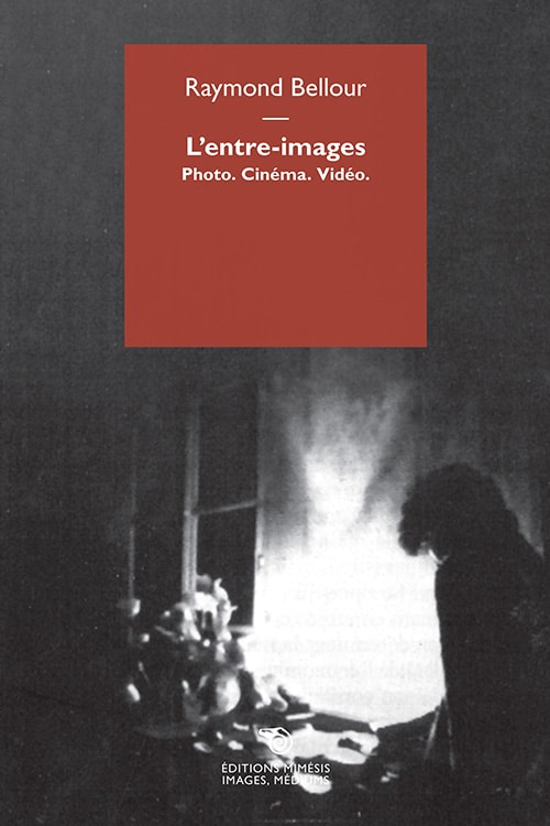 R. Bellour, L'entre-images. Photo, cinéma, vidéo